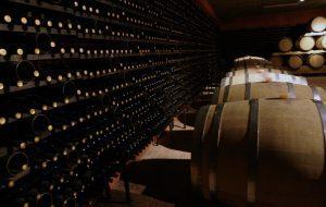 Une cave à vin