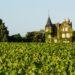 Dégustez du vin dans un château viticole